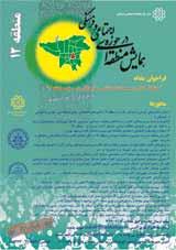 همایش مشاغل کاذب و معضلات اجتماعی و فرهنگی در سطح منطقه 12