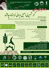 همایش ملی و فن بازار گز، غذای اصیل ایرانی- فرصتها و چالشها
