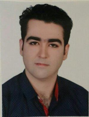 سید شرف الدین حسینی نسب