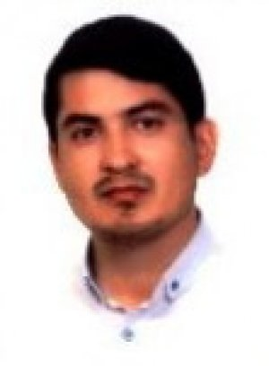 محسن سلیمی امان آباد