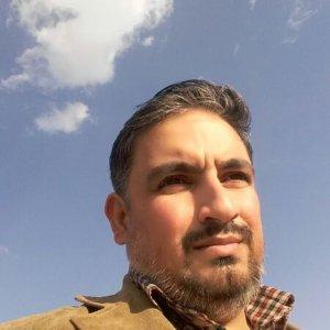 محسن مانشتی
