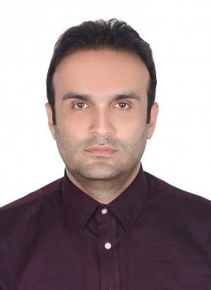 حامد احمدی مقدم