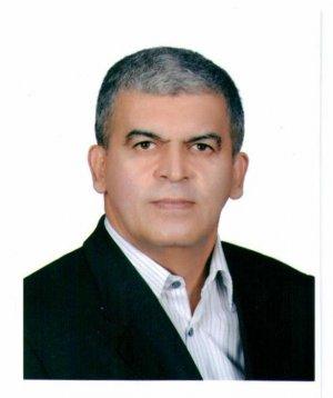 محمدرضا شمس بیدهندی