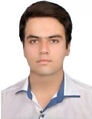 محمدرضا خواجه کولکی