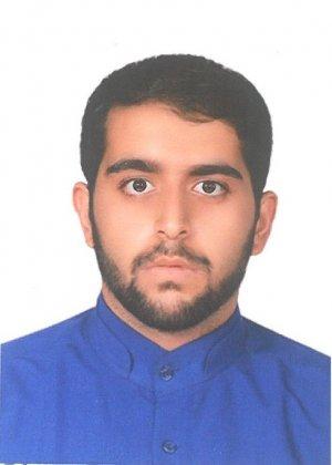 محمد حسین حامدی