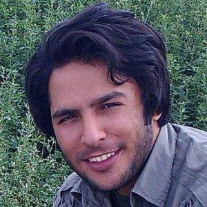 وحید محمدی