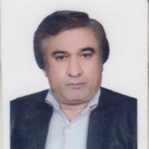 یوسف صالحی